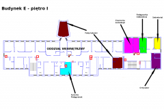 Oddział Wewnętrzny - 1 Piętro